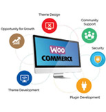 Wordpress WooCommerce theme development